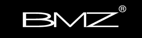 bmz_logo.png