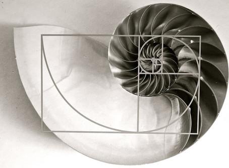 Fibonacci Ratios