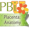 Placenta Encapsulation: Anatomy Course