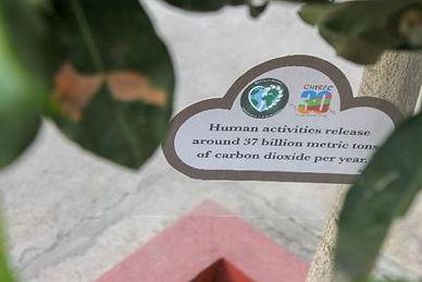 Awareness Placards.JPG