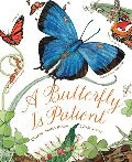 A Butterfly Is Patient - room 3 wish list