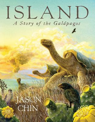 Island: A Story of the Gal�pagos by Jason Chin