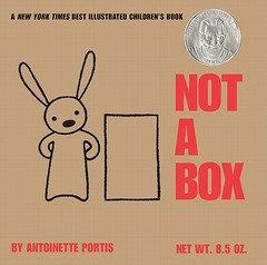 Not a Box - Board Book