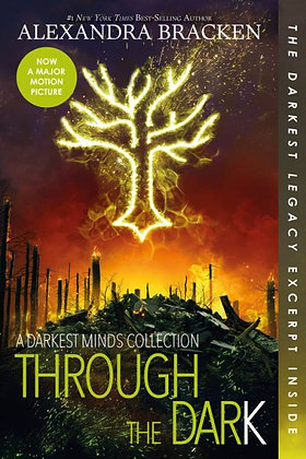 Through the Dark (3 Darkest Mind Novellas)