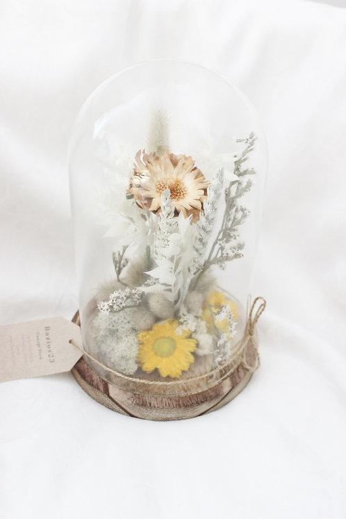 Cloche Fleurs séchées Blanche