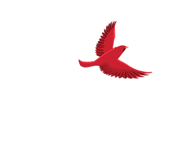 cardinal flying for site.png