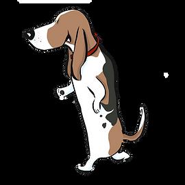 basset hound Laurie Stein.png
