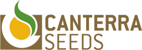 Canterra Seeds 2.png