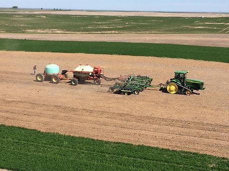 Seeding Hemp.JPG