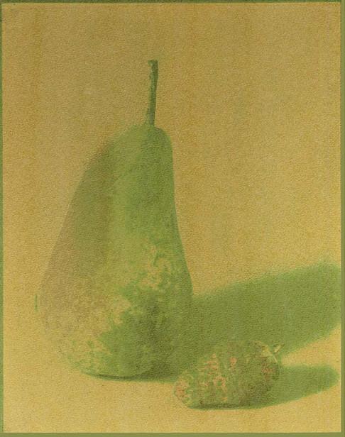 zGum-Bicormate-10.jpg
