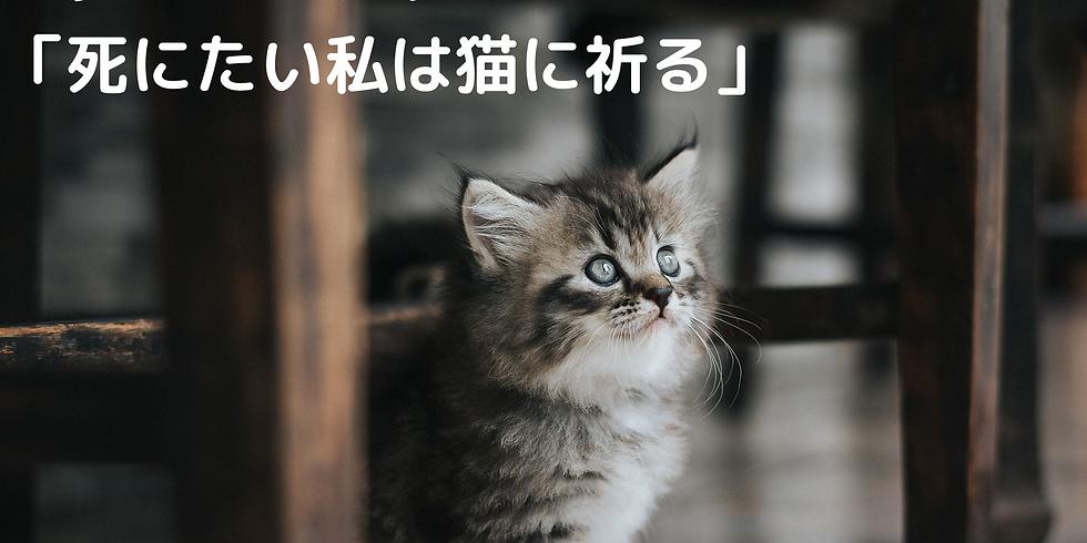 <オンライン開催>マーダーミステリーゲーム「死にたい私は猫に祈る」
