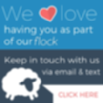 Website-banner-square-blue.png