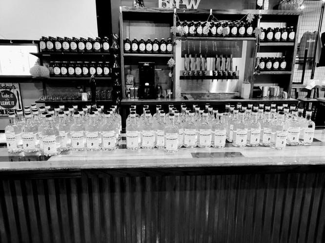 White Rum - Vodka - Gin Bottles - BW.jpg