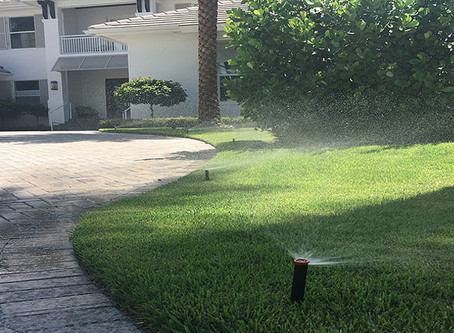 South FL Water Tips