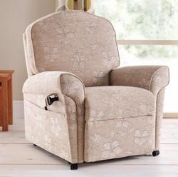 Shelford Standard Chair