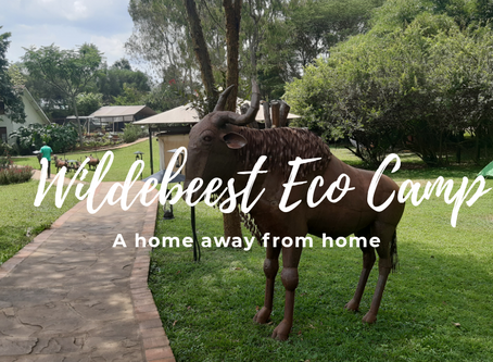 Wildebeest Eco Camp: A home away from home