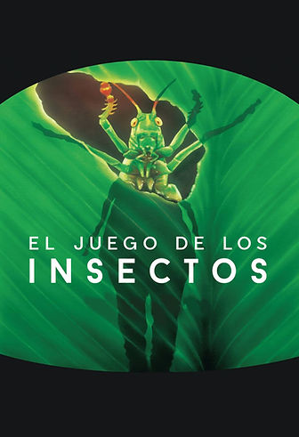 2.Insectos - Postal Web.jpg