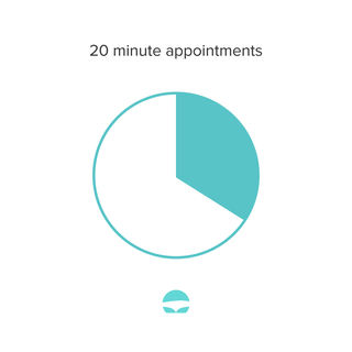 20 minute appointments