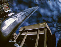 aerochrome bennici 1(45).jpg