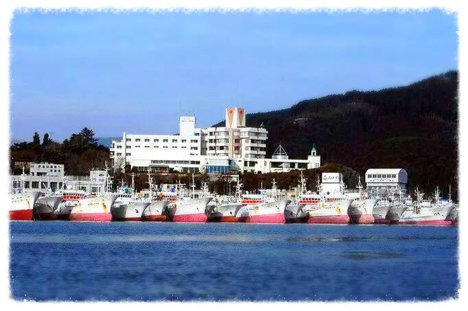 気仙沼魚港