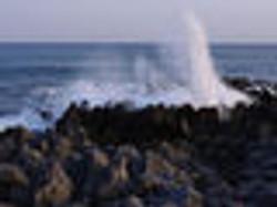 岩井埼潮吹き岩