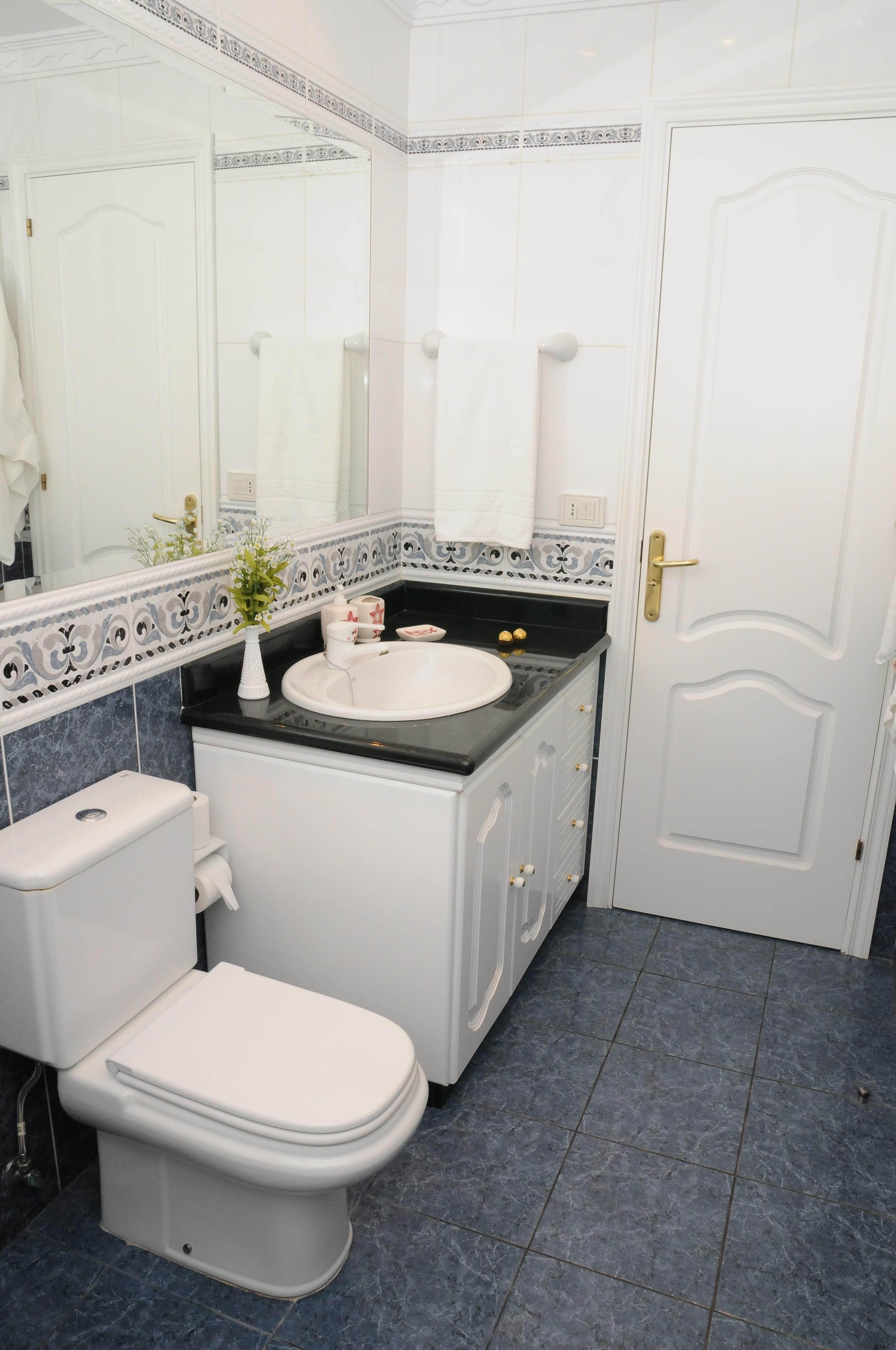 Toilet Room with big Mirror