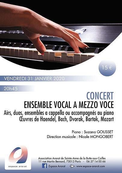 Concert 31 janvier.jpg