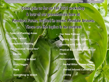 Free Fall Greenhouse Gathering! September 12th at Pinedora Farms