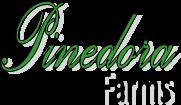 Pinedora Logo.png