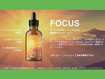 focus-4.jpg