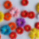 fiori e colori 23 novembre.jpg