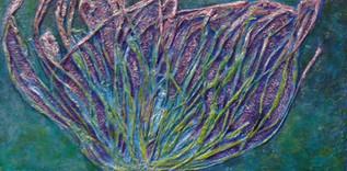 Anemony Anomaly II, 2009
