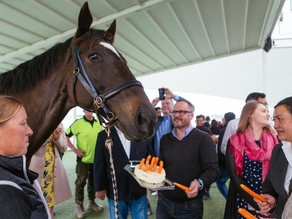 Auckland Racing Club honour legendary birthday boy