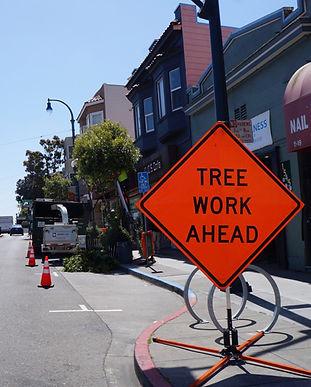 Tree work ahead.jpg