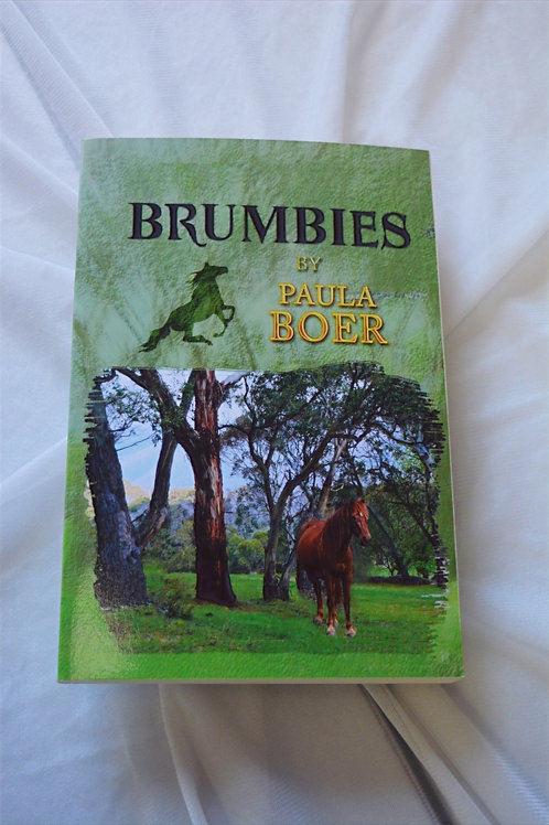 Brumbies by Paula Boar