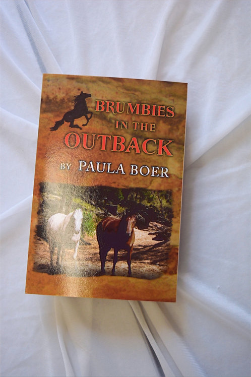 Brumbies in the Outback by Paula Boer