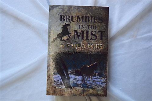 Brumbies in the Mist by Paula Boer