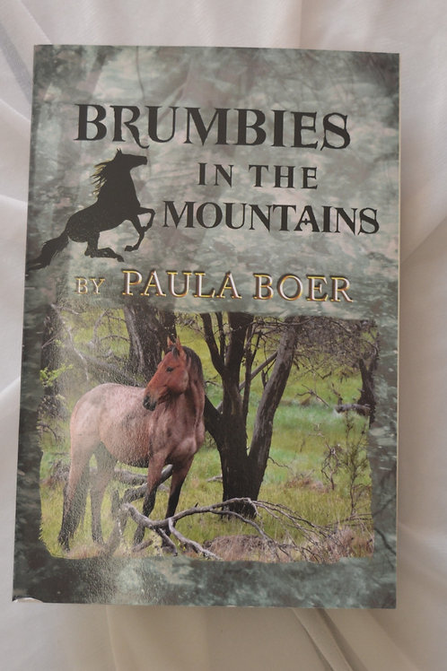 Brumbies in the Mountains by Paula Boer