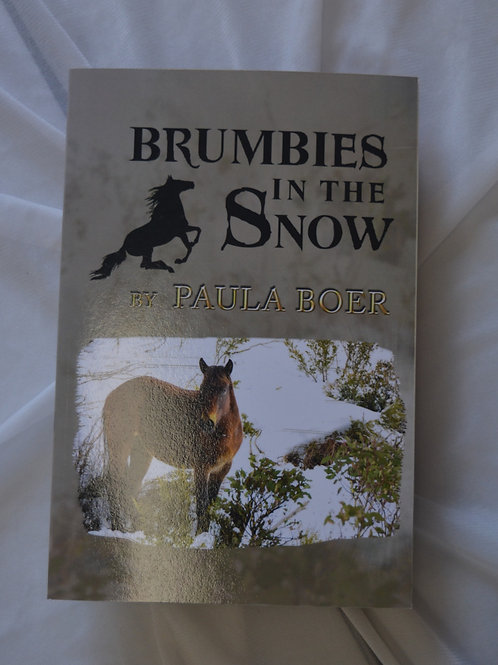 Brumbies in the Snow by Paula Boer