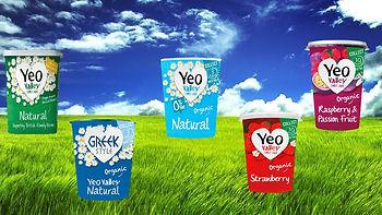 organic YV yogurrts.jpg
