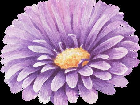 La magia de las flores.
