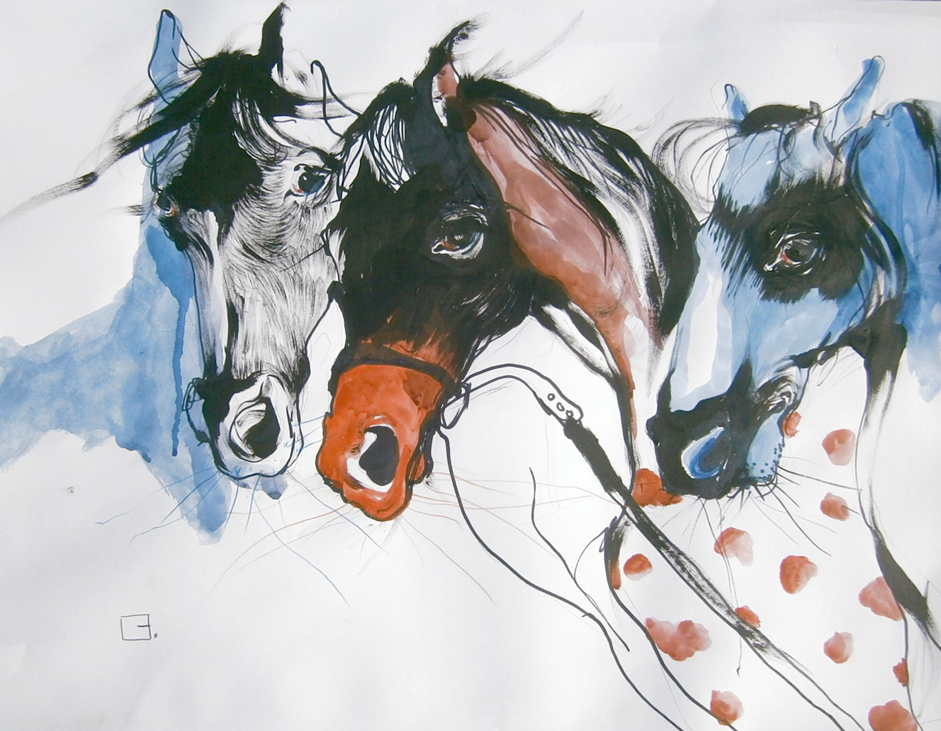 fre3 horses 150$