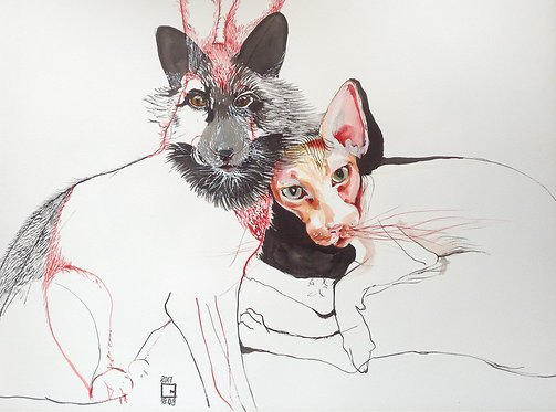 Cat fox and rabbit drawing