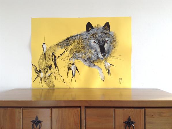 Sunshine on the wall, animal drawing .