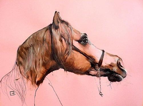 Pink Equestrian