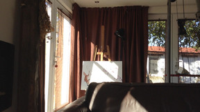 mobile bird  shadows on my work