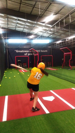 HF Softball Cage