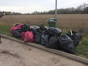 Cllr Finch - anther litter pick.jpg
