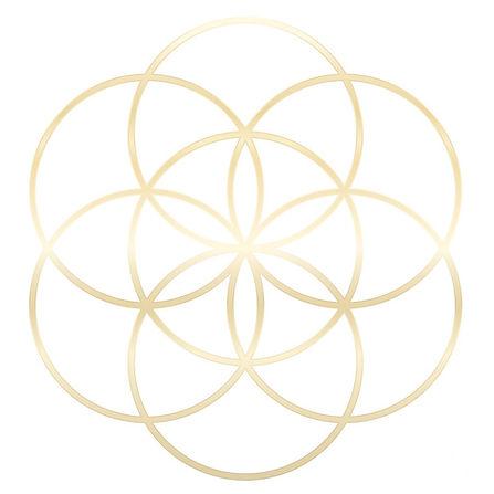 golden-seed-of-life-flower-of-life-peter-hermes-furian_edited.jpg