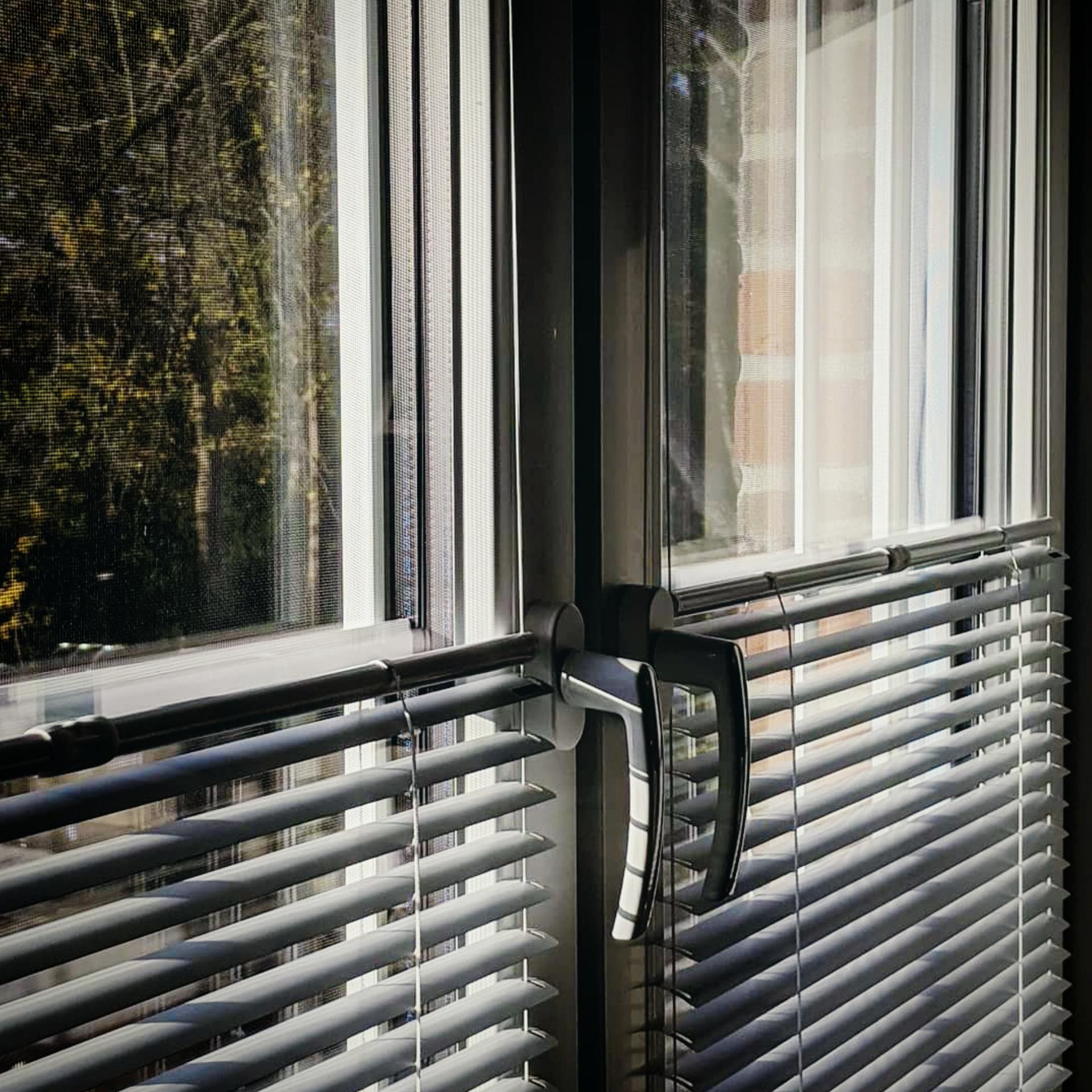Doppelfenster mit zwei Lamellenplissees